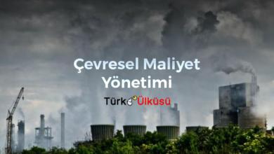 Çevresel maliyet yönetimi
