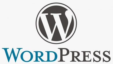 Photo of WordPress Category Yazısı Kaldırma